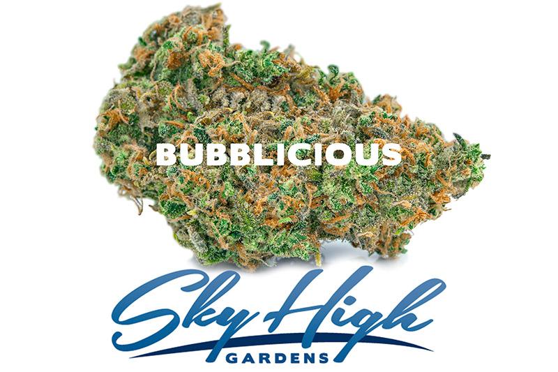 Photo of Bubblicious bud