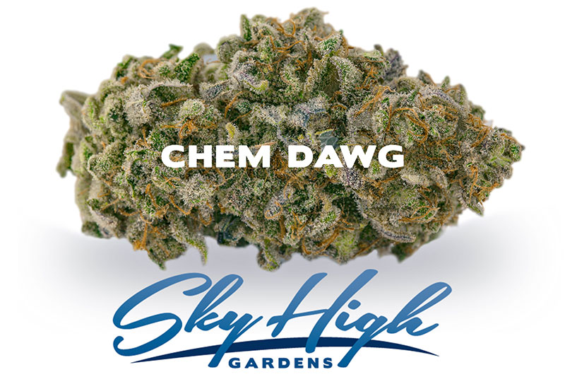Branded Image of Chem Dawg Strain