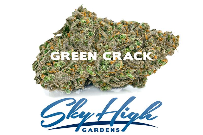 Photo of Green Crack Bud