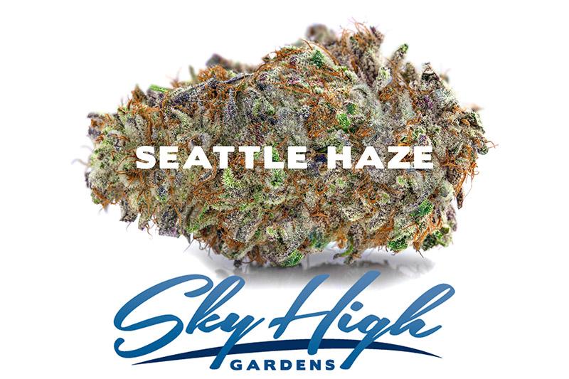 Branded photo of Seattle Haze Bud